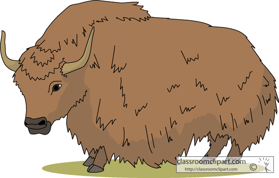 yak clipart #3 - Yak Animal PNG