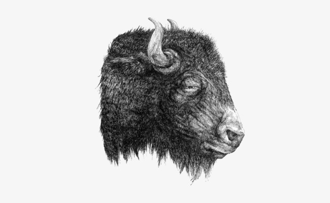 Simple black and white yak head picture Free PNG and PSD - Yak PNG Black And White