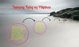 Copy Of Yamang Tubig Ng Pilipinas - Yamang Lupa PNG