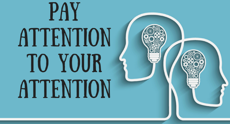Your Attention Please PNG - 76710