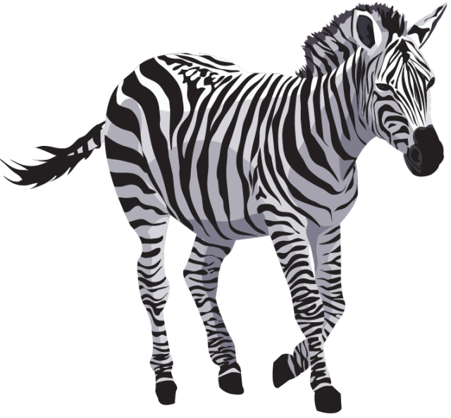 Zebra PNG File - Zebra HD PNG