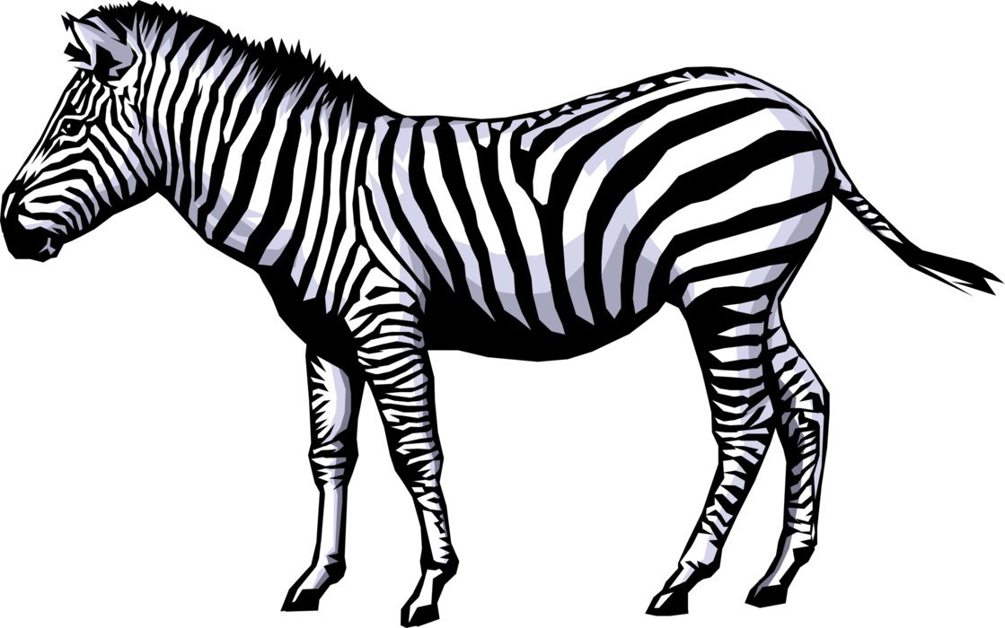 Vector Illustration of Striped African Equid Zebra Horse - Zebra PNG HD