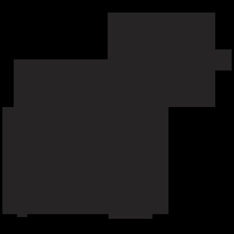 Zebra PNG - 21995