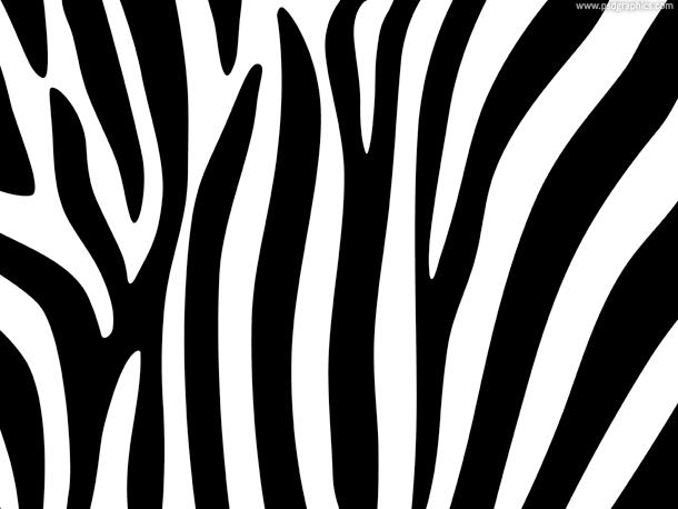 Zebra Print PNG-PlusPNG.com-610 - Zebra Print PNG
