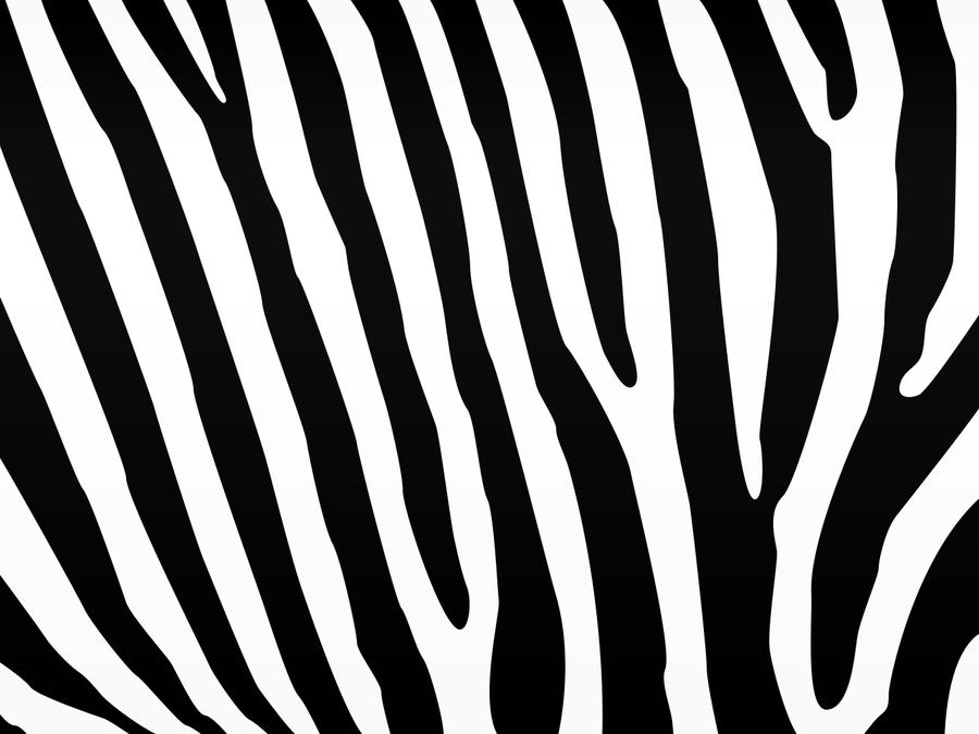 Wallpaper Zebra Print Youtube