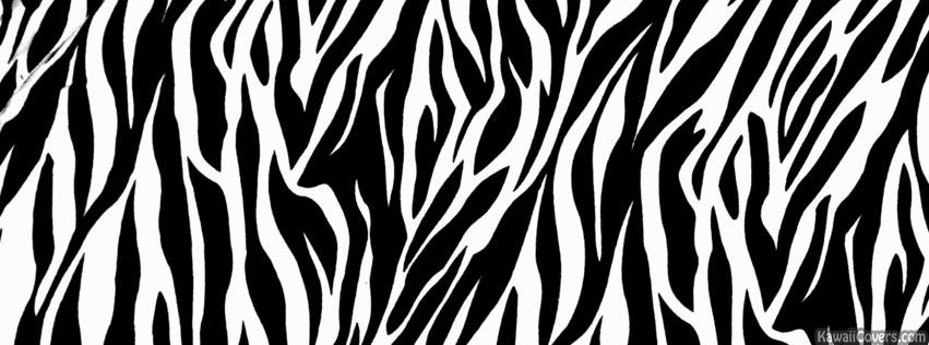 Zebra Print Facebook c. PlusPng.com PlusPng.com  - Zebra Print PNG