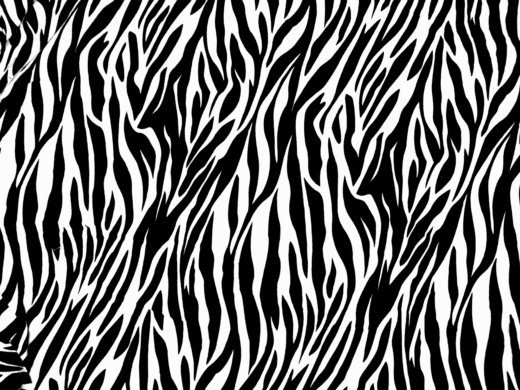 Zebra-print-texture-by-ghoulskout-on-deviantart.png 2,000 - Zebra Print PNG