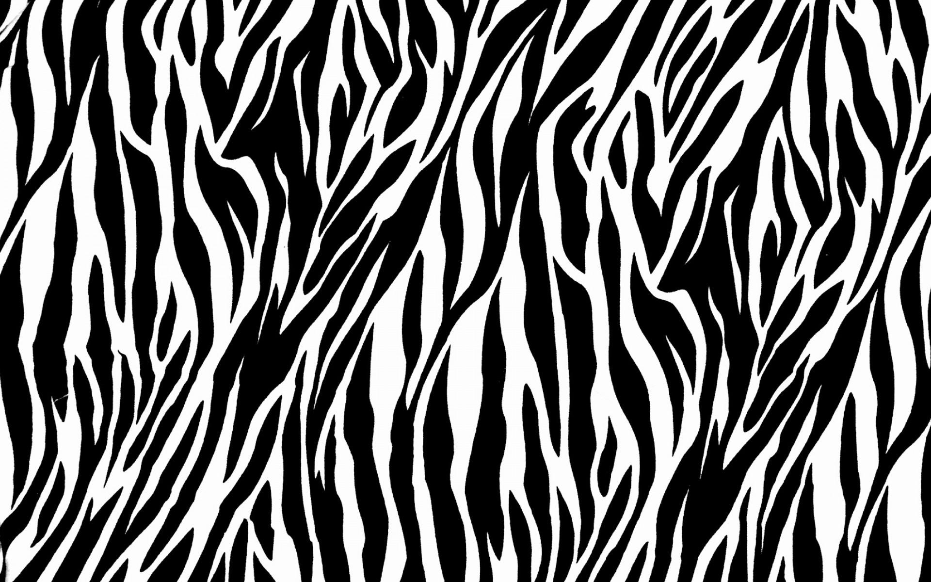 Zebra Print PNG - 40627