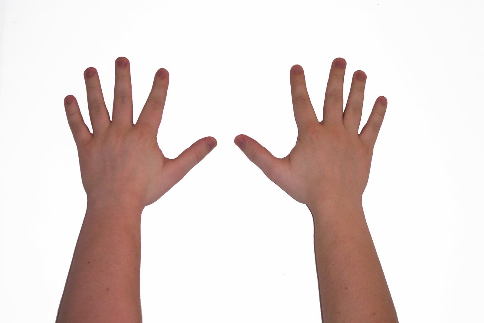 Zehn Finger PNG - 40890